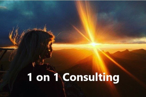 1on1 Consulting Image