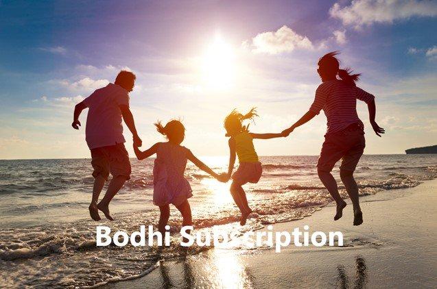 Bodhi Program Image